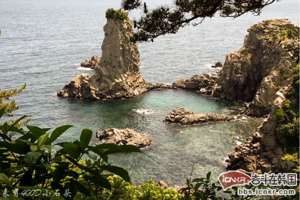 济州岛景点:汉拿山 重点推荐_韩国自由行攻略-韩游网