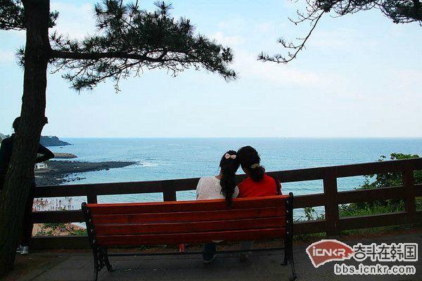 对韩国济州岛的一切印象源于韩剧