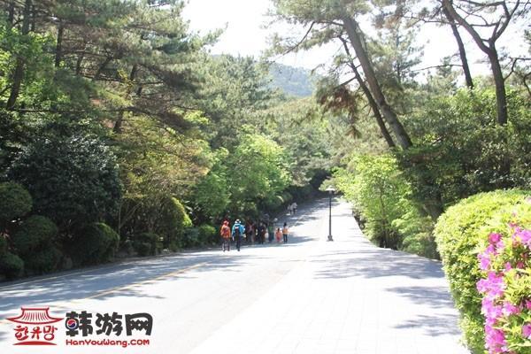 釜山太宗台25