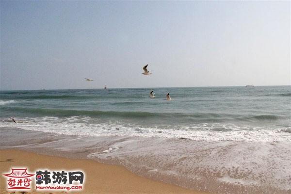 釜山海云台海水浴场_韩国景点_韩游网