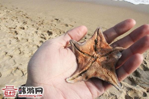 釜山海云台7