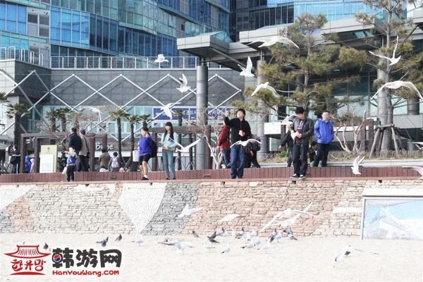 釜山海云台4
