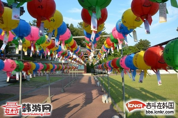 济州岛旅游必备 600路中韩路线图