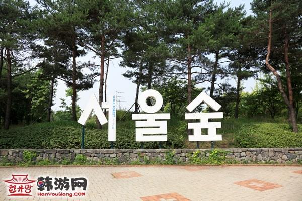 首尔林_韩国景点_韩游网