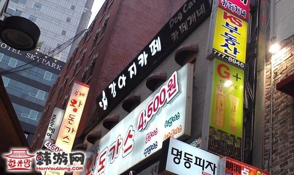 明洞狗狗咖啡屋Cafe Gaene_韩国美食_韩游网