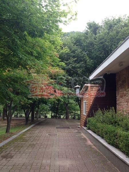 韩国庆尚北道闻庆鸟岭32