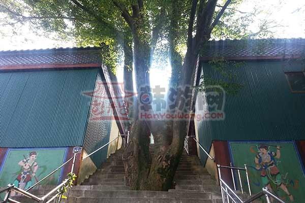 韩国木浦儒达山雕刻公园15