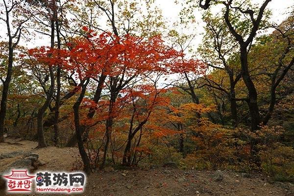 韩国雪岳山19