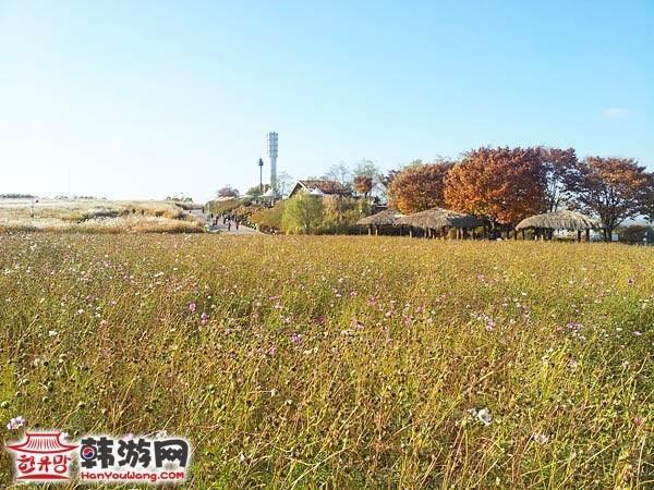 蓝天公园_韩国景点_韩游网