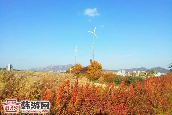 韩国蓝天公园12