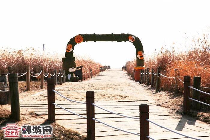 韩国蓝天公园9