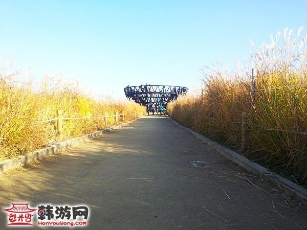 韩国蓝天公园24