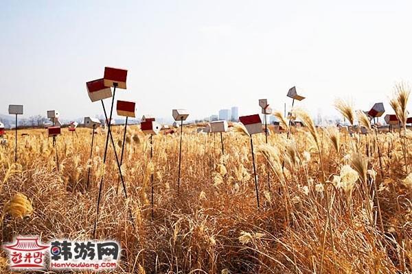 韩国蓝天公园29