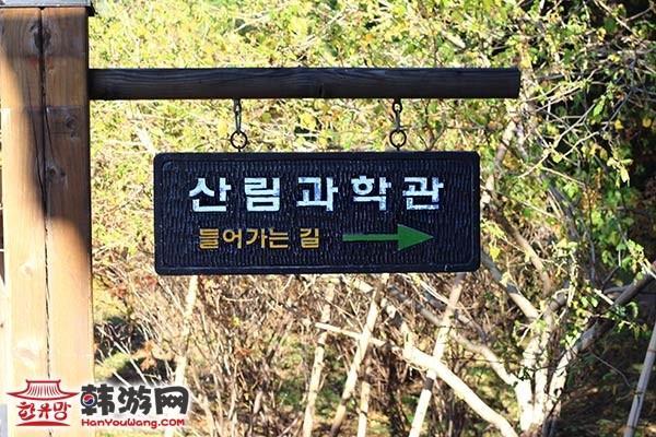 国立山林科学院_韩国景点_韩游网