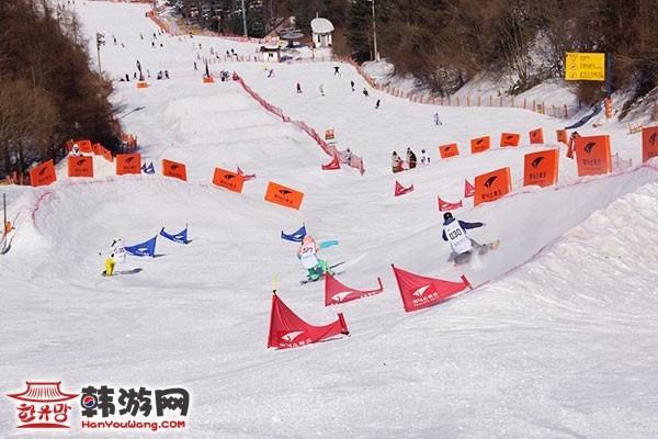 韩国凤凰城度假村滑雪场5