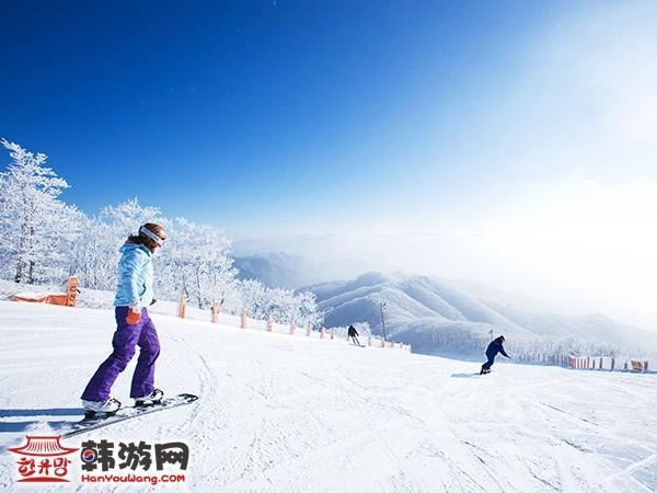 韩国凤凰城度假村滑雪场6