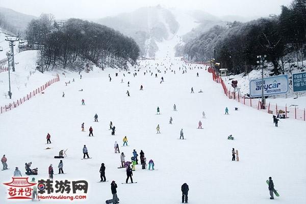 韩国凤凰城度假村滑雪场7