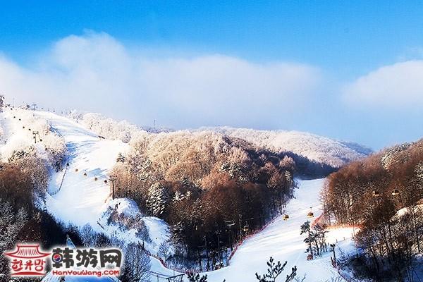 韩国凤凰城度假村滑雪场8