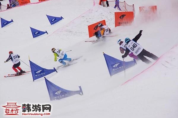 韩国凤凰城度假村滑雪场10