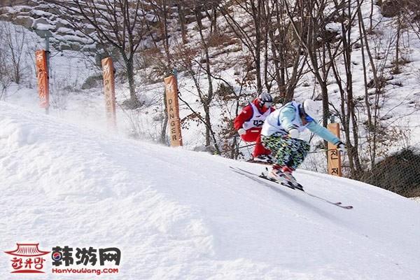 韩国凤凰城度假村滑雪场14