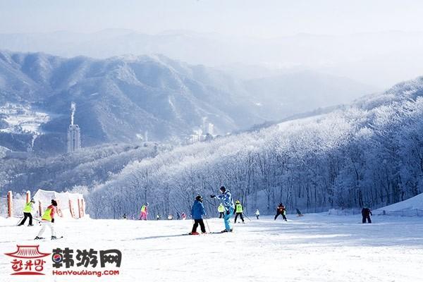 韩国凤凰城度假村滑雪场11