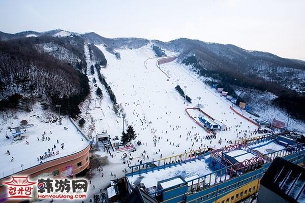 韩国阳智松林度假村滑雪场17