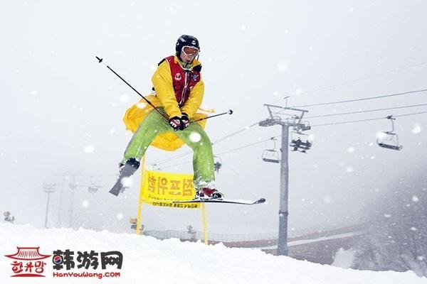 阳智松林滑雪场_韩国景点_韩游网