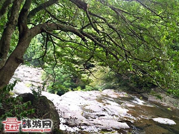 韩国天地渊瀑布