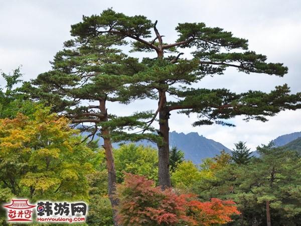 韩国雪岳山