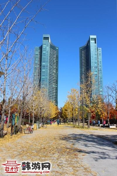 韩国首尔林