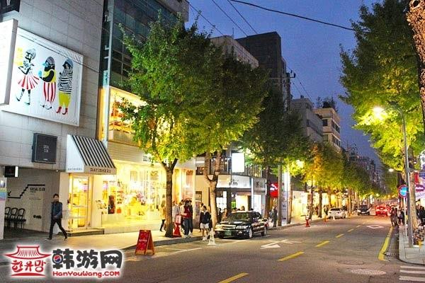 新沙洞林荫树路_韩国购物_韩游网