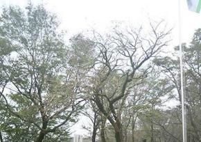 济州岛汉拿山
