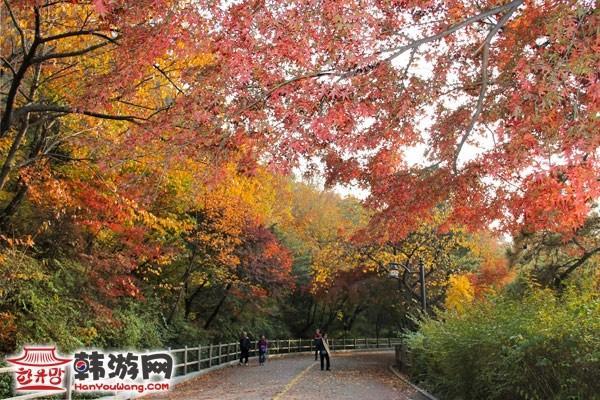 首爾南山公園_韓國景點_韓遊網