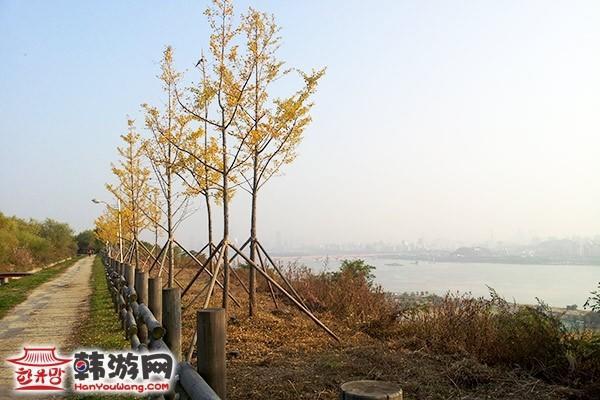 韩国彩霞公园