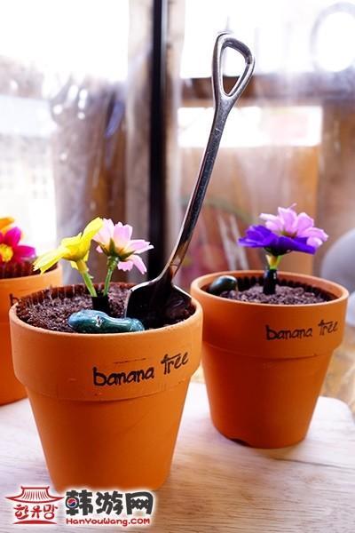 花盆蛋糕banana tree咖啡馆11