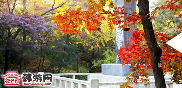 韩国首尔南山公园