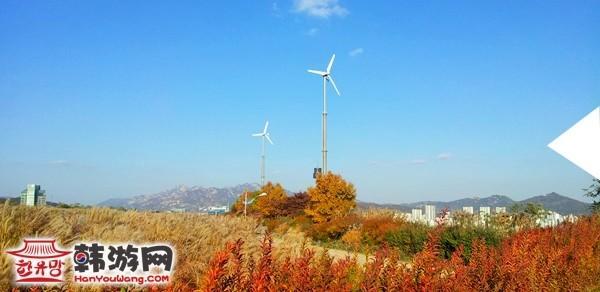 韩国首尔蓝天公园