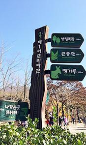 韩国首尔大公园