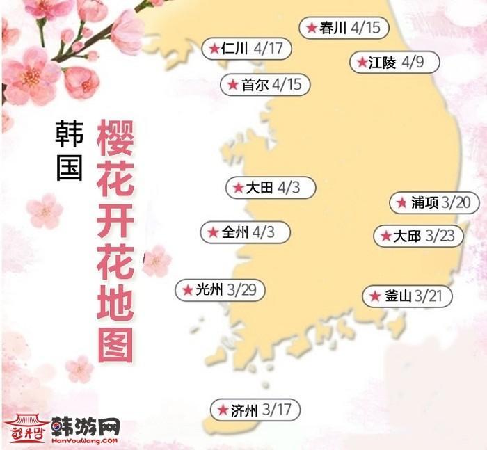 韩国樱花 济州岛 首尔