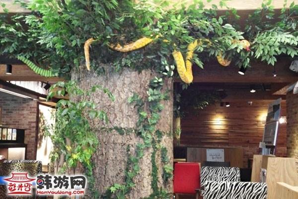 韩国Zoo coffee特色咖啡厅13