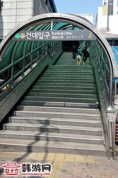 韩国Zoo coffee特色咖啡厅15