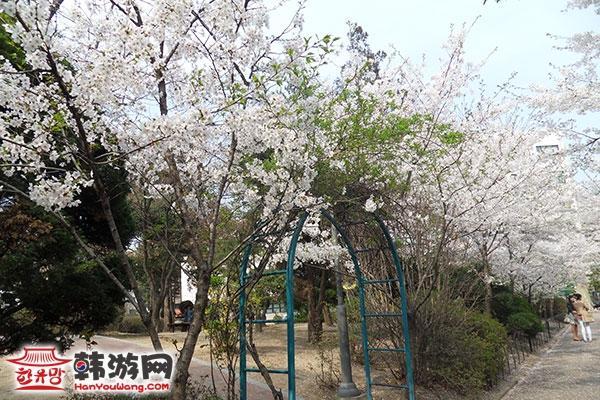 韩国外国语大学05