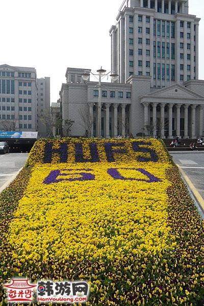 韩国外国语大学11