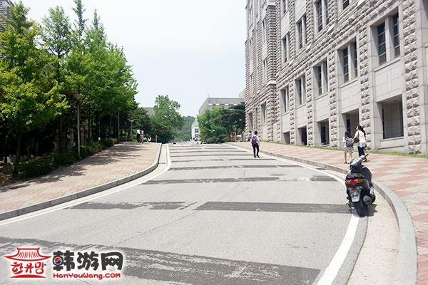 韩国高丽大学10