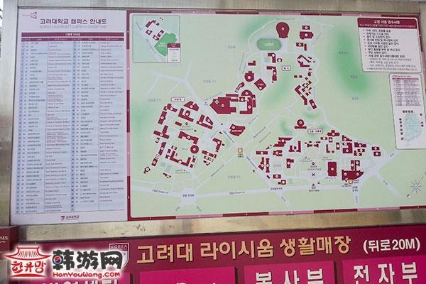 韩国高丽大学16