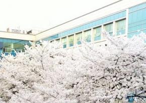 韩国东国大学