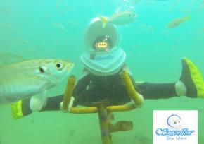 济州岛海底漫步