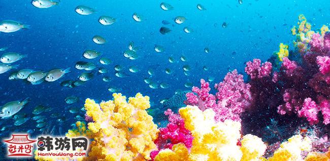 3平方公里,海岸线长4.2公里,是个椭圆形的岛屿,属亚热带海洋性气候.