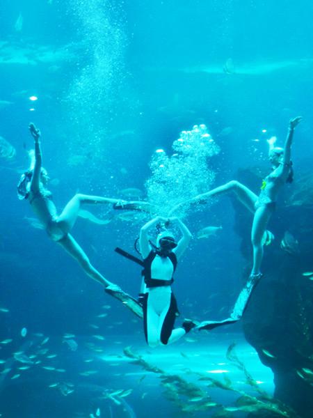 一山韩华Aqua planet水族馆(水上星球)_韩国景点_韩游网