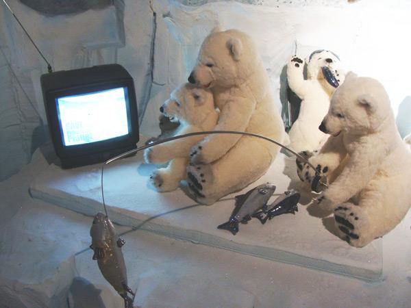 庆州泰迪熊博物馆介绍二